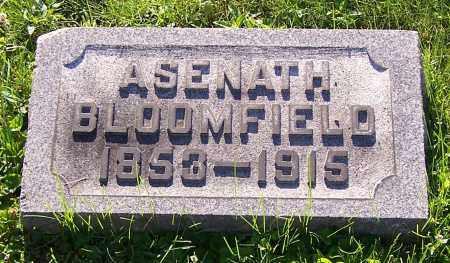 BLOOMFIELD, ASENATH - Stark County, Ohio   ASENATH BLOOMFIELD - Ohio Gravestone Photos