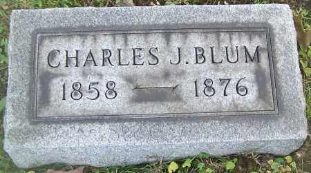 BLUM, CHARLES J. - Stark County, Ohio   CHARLES J. BLUM - Ohio Gravestone Photos