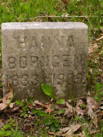 BORNGEN, JOHANNA AKA HANNAH - Stark County, Ohio | JOHANNA AKA HANNAH BORNGEN - Ohio Gravestone Photos