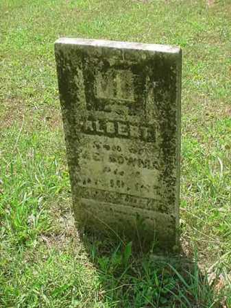 BOWMAN, ALBERT - Stark County, Ohio   ALBERT BOWMAN - Ohio Gravestone Photos