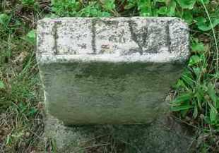 BOWMAN, LEVI - Stark County, Ohio | LEVI BOWMAN - Ohio Gravestone Photos