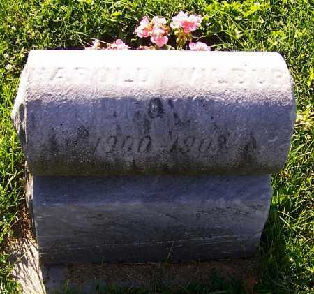 BROWN, ARNOLD WILBUR - Stark County, Ohio   ARNOLD WILBUR BROWN - Ohio Gravestone Photos