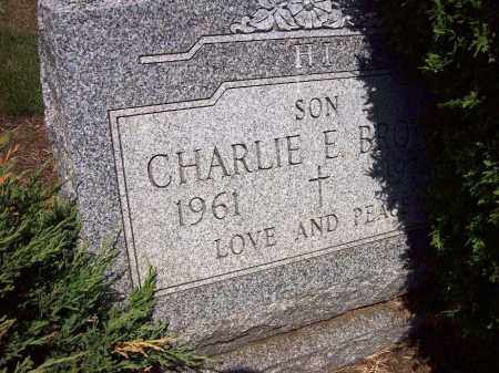 BROWN, CHARLIE R. - Stark County, Ohio | CHARLIE R. BROWN - Ohio Gravestone Photos