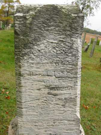 BRIGGLE BROWN, ELIZABETH - Stark County, Ohio | ELIZABETH BRIGGLE BROWN - Ohio Gravestone Photos