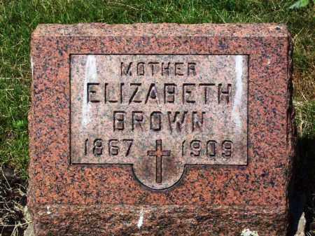 BROWN, ELIZABETH - Stark County, Ohio   ELIZABETH BROWN - Ohio Gravestone Photos