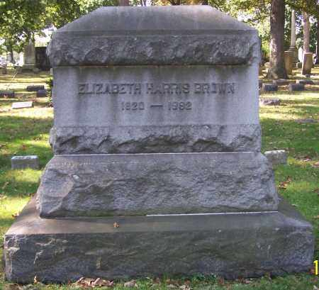 BROWN, ELIZABETH HARRIS - Stark County, Ohio | ELIZABETH HARRIS BROWN - Ohio Gravestone Photos