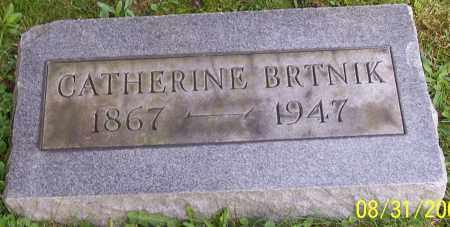 BRTNIK, CATHERINE - Stark County, Ohio | CATHERINE BRTNIK - Ohio Gravestone Photos