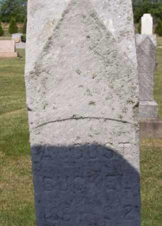 BUCKEL, AUGUST - Stark County, Ohio | AUGUST BUCKEL - Ohio Gravestone Photos