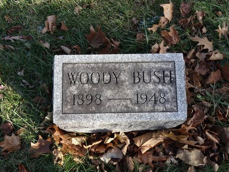 BUSH, WOODY - Stark County, Ohio | WOODY BUSH - Ohio Gravestone Photos