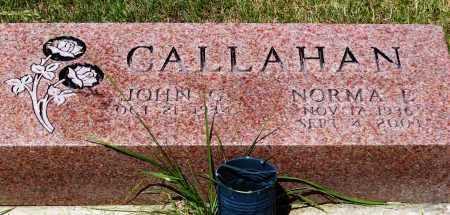 CALLAHAN, JOHN G. - Stark County, Ohio | JOHN G. CALLAHAN - Ohio Gravestone Photos