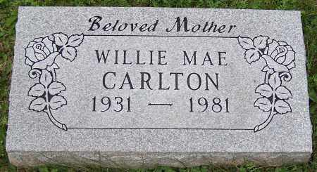 CARLTON, WILLIE MAE - Stark County, Ohio | WILLIE MAE CARLTON - Ohio Gravestone Photos