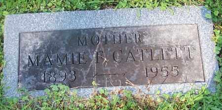 CATLETT, MAMIE F. - Stark County, Ohio | MAMIE F. CATLETT - Ohio Gravestone Photos