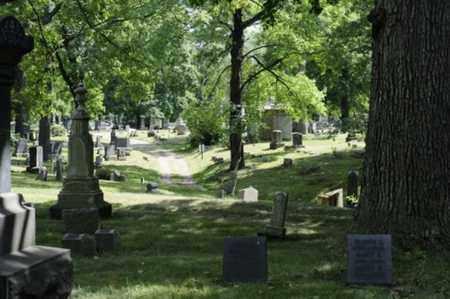 CEMETERY, MASSILLON CITY - OVER VIEW - Stark County, Ohio | MASSILLON CITY - OVER VIEW CEMETERY - Ohio Gravestone Photos