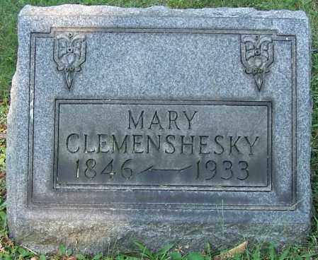 CLEMENSHESKY, MARY - Stark County, Ohio | MARY CLEMENSHESKY - Ohio Gravestone Photos