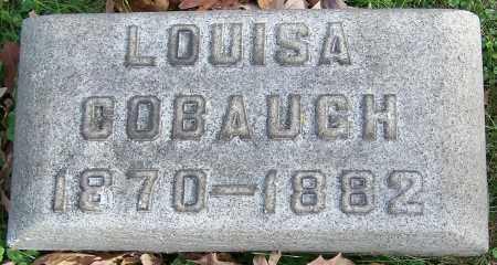 COBAUGH, LOUISA - Stark County, Ohio   LOUISA COBAUGH - Ohio Gravestone Photos