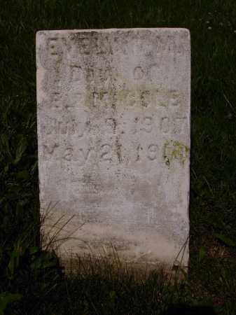 COLE, EVELYN M. - Stark County, Ohio   EVELYN M. COLE - Ohio Gravestone Photos