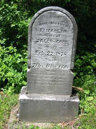 HOWENSTINE COOK, ELIZABETH - Stark County, Ohio | ELIZABETH HOWENSTINE COOK - Ohio Gravestone Photos