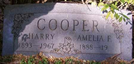 COOPER, AMELIA F. - Stark County, Ohio | AMELIA F. COOPER - Ohio Gravestone Photos