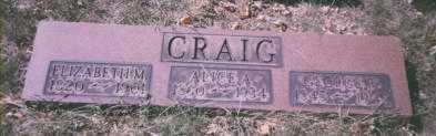 CRAIG, ALICE ANN - Stark County, Ohio | ALICE ANN CRAIG - Ohio Gravestone Photos