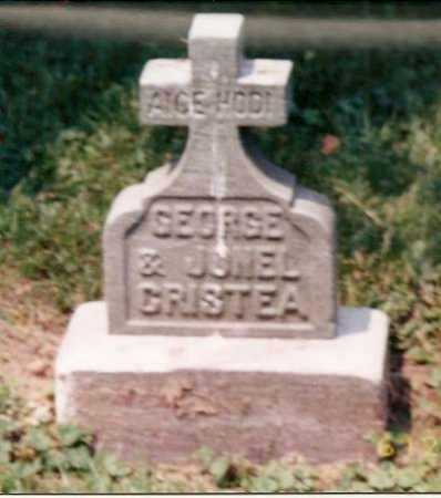 CRISTEA, JONEL (JOHN) - Stark County, Ohio | JONEL (JOHN) CRISTEA - Ohio Gravestone Photos