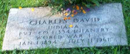 DAVID, CHARLES - Stark County, Ohio | CHARLES DAVID - Ohio Gravestone Photos