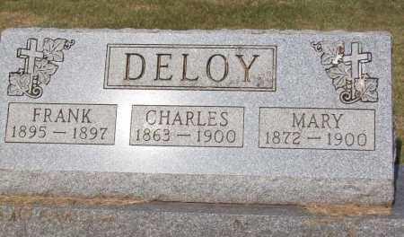 DELOY, MARY - Stark County, Ohio | MARY DELOY - Ohio Gravestone Photos