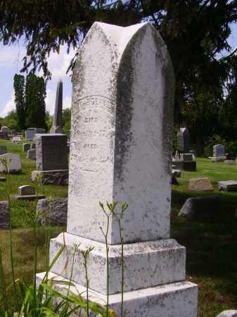 DEWALT, MONUMENT - Stark County, Ohio | MONUMENT DEWALT - Ohio Gravestone Photos