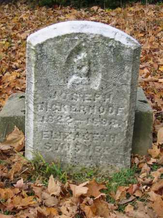 SWISHER DICKERHOOF, ELIZABETH - Stark County, Ohio | ELIZABETH SWISHER DICKERHOOF - Ohio Gravestone Photos