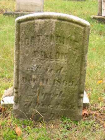 DILLON, CATHARINE - Stark County, Ohio | CATHARINE DILLON - Ohio Gravestone Photos