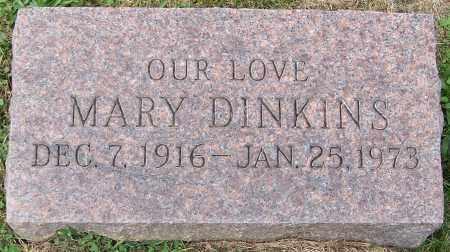 DINKINS, MARY - Stark County, Ohio   MARY DINKINS - Ohio Gravestone Photos
