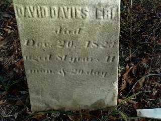 EBI, DAVID DAVIES - Stark County, Ohio | DAVID DAVIES EBI - Ohio Gravestone Photos