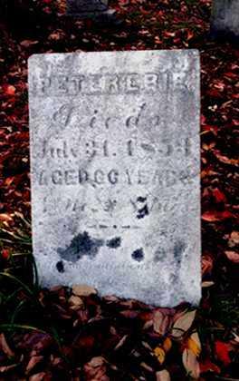 EBIE, PETER - Stark County, Ohio   PETER EBIE - Ohio Gravestone Photos