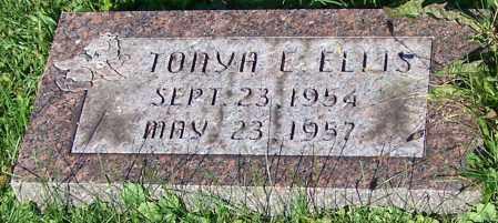 ELLIS, TONYA L. - Stark County, Ohio | TONYA L. ELLIS - Ohio Gravestone Photos