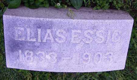 ESSIG, ELIAS - Stark County, Ohio | ELIAS ESSIG - Ohio Gravestone Photos