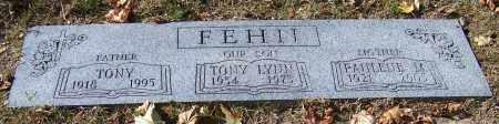 FEHII, TONY LYNN - Stark County, Ohio   TONY LYNN FEHII - Ohio Gravestone Photos
