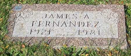FERNANDEZ, JAMES A. - Stark County, Ohio | JAMES A. FERNANDEZ - Ohio Gravestone Photos