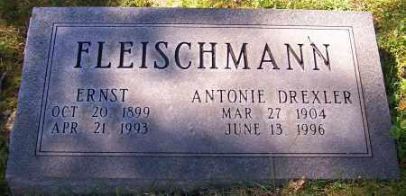FLEISCHMANN, ERNST - Stark County, Ohio | ERNST FLEISCHMANN - Ohio Gravestone Photos