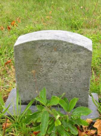 FOX, JENNIE ADELL - Stark County, Ohio | JENNIE ADELL FOX - Ohio Gravestone Photos