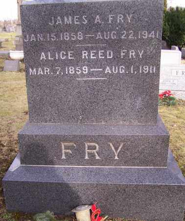 FRY, ALICE REED - Stark County, Ohio | ALICE REED FRY - Ohio Gravestone Photos
