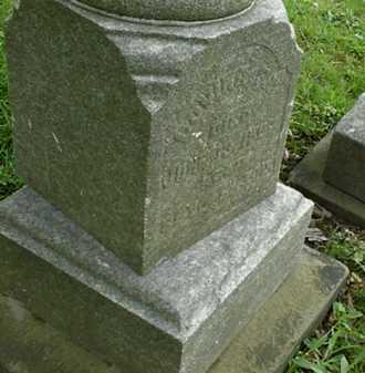 PAINTER FRY, LOVINA (LAVINA) - Stark County, Ohio | LOVINA (LAVINA) PAINTER FRY - Ohio Gravestone Photos