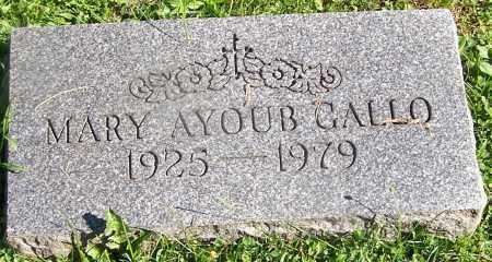 GALLO, MARY AYOUB - Stark County, Ohio | MARY AYOUB GALLO - Ohio Gravestone Photos