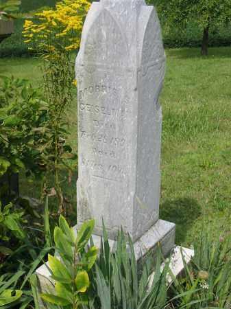 GEISELMAN, MORRIS S - Stark County, Ohio | MORRIS S GEISELMAN - Ohio Gravestone Photos