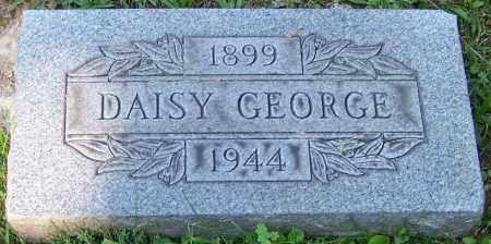 GEORGE, DAISY - Stark County, Ohio | DAISY GEORGE - Ohio Gravestone Photos