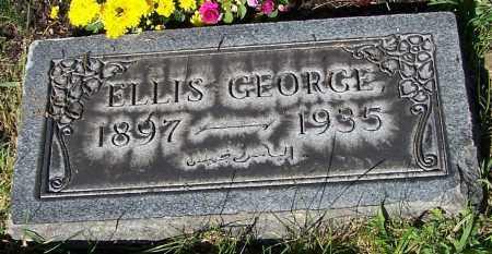 GEORGE, ELLIS - Stark County, Ohio   ELLIS GEORGE - Ohio Gravestone Photos