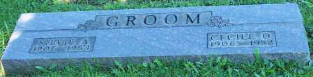 GROOM, CECILE O. - Stark County, Ohio | CECILE O. GROOM - Ohio Gravestone Photos