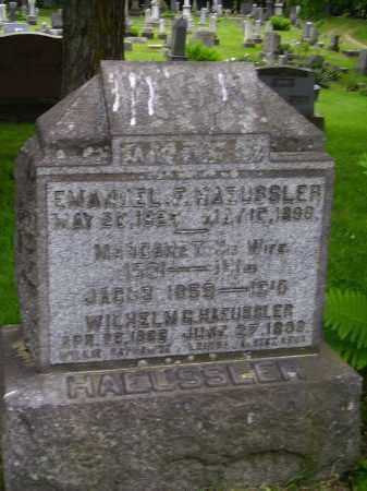HAEUSSLER, WILHELM G. - Stark County, Ohio | WILHELM G. HAEUSSLER - Ohio Gravestone Photos