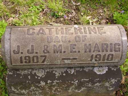 HARIG, CATHERINE - Stark County, Ohio | CATHERINE HARIG - Ohio Gravestone Photos