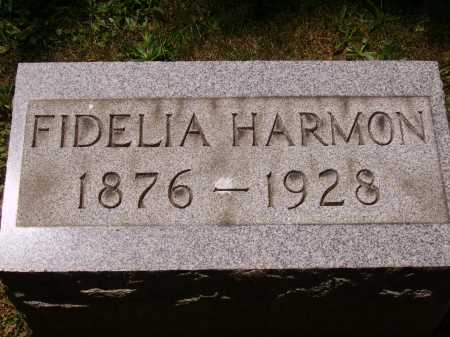 HARMON, FIDELIA - Stark County, Ohio | FIDELIA HARMON - Ohio Gravestone Photos