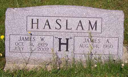 HASLAM, JAMES A. - Stark County, Ohio | JAMES A. HASLAM - Ohio Gravestone Photos