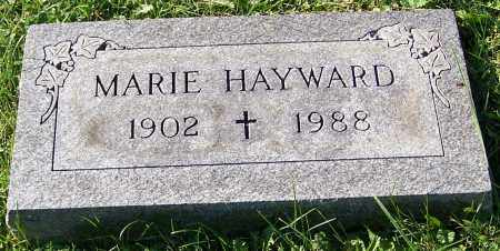 HAYWARD, MARIE - Stark County, Ohio   MARIE HAYWARD - Ohio Gravestone Photos